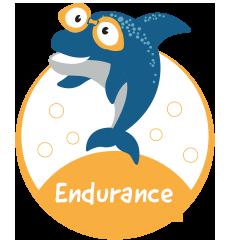 westswim endurance